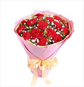 幸福典藏----16枝红康乃馨