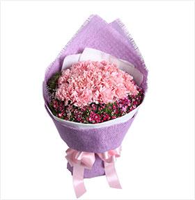 美丽春漾----16枝粉色康乃馨