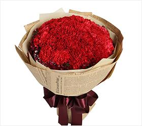 牵挂----红色康乃馨33枝