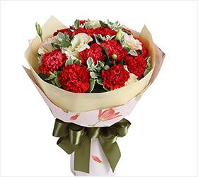 妈妈的爱----红色康乃馨16枝